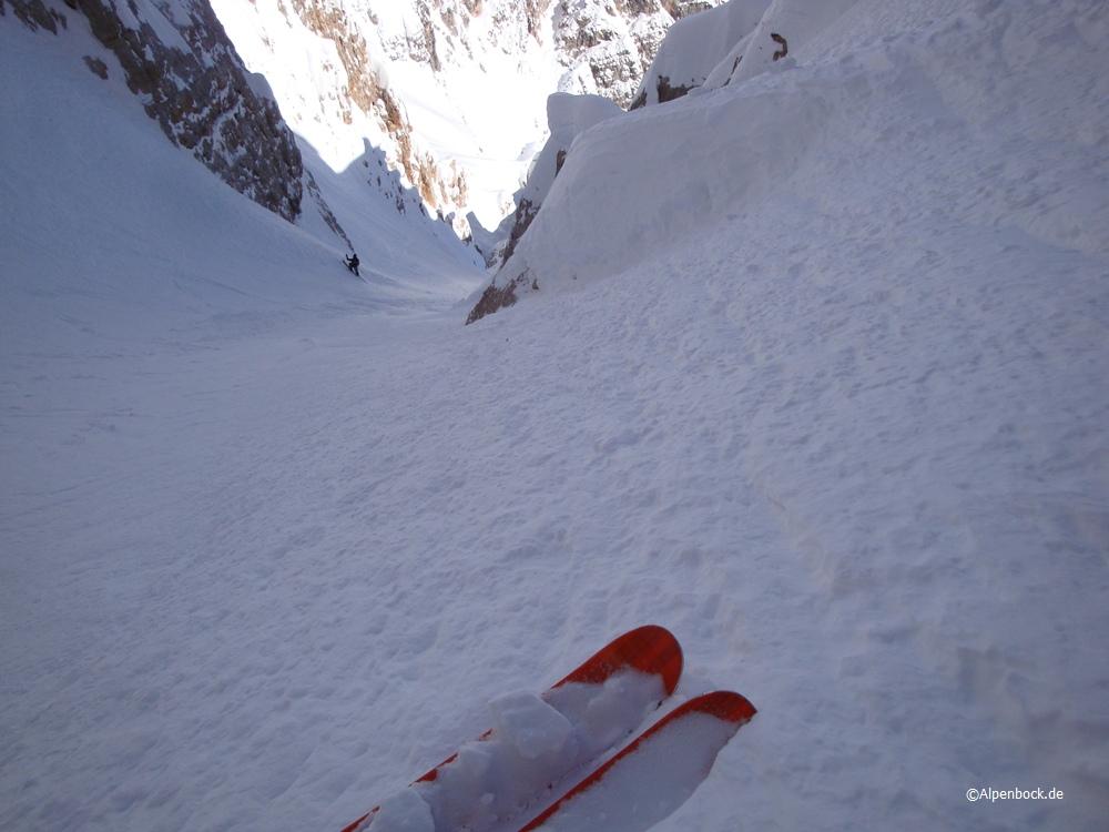 dolomiten alpenbock