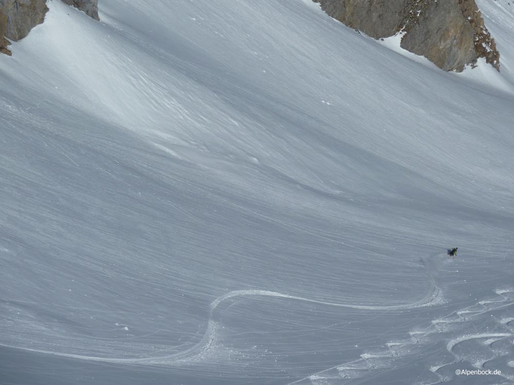 grinberg alpenbock