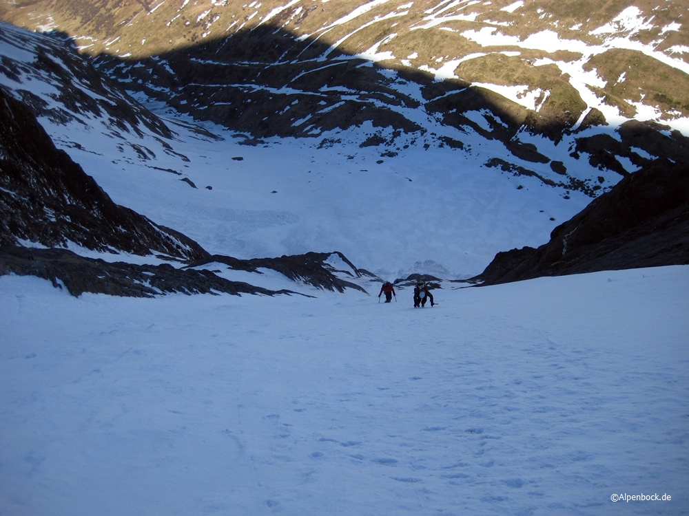 weissspitze alpenbock