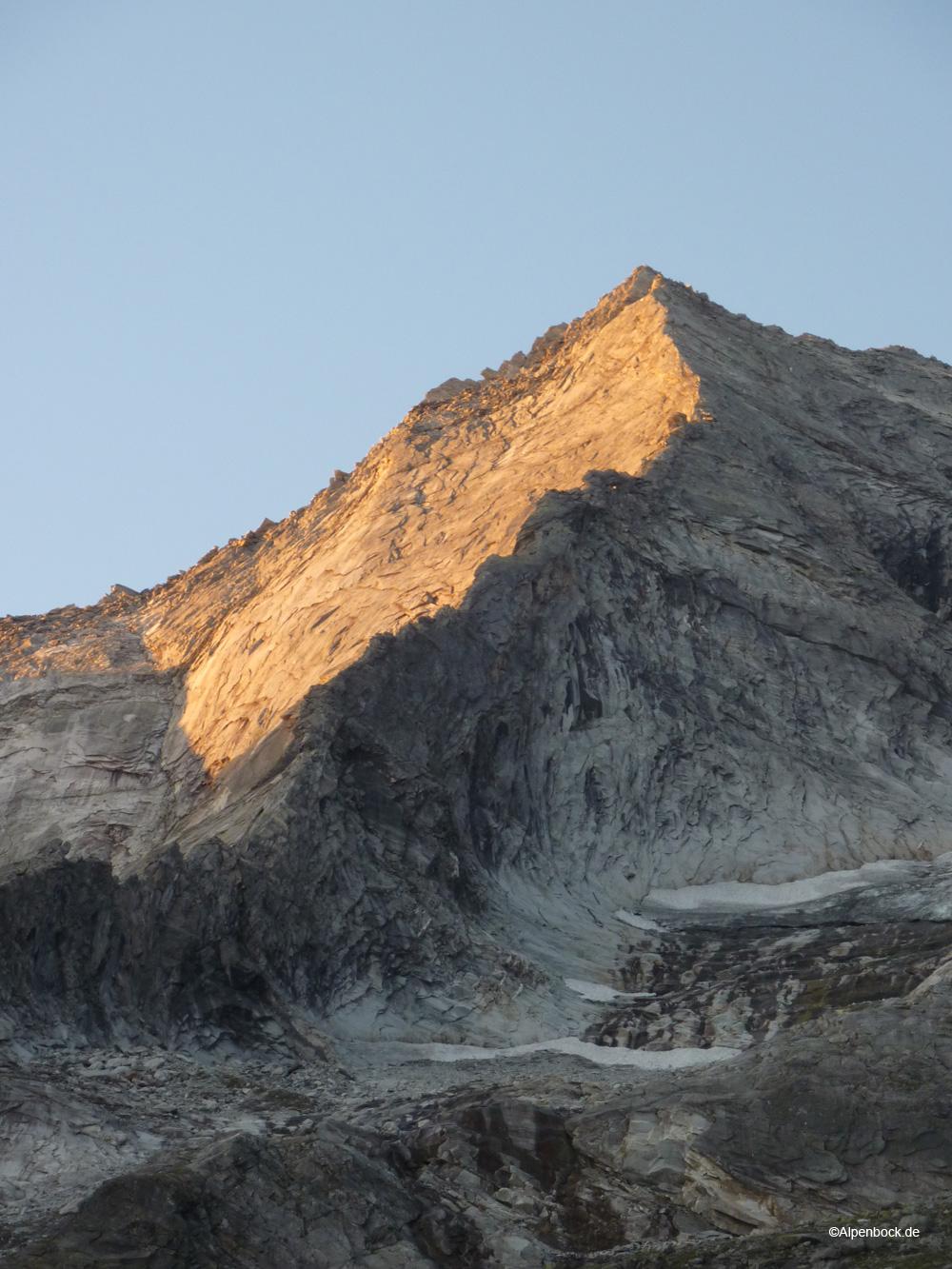 grundschartner alpenbock