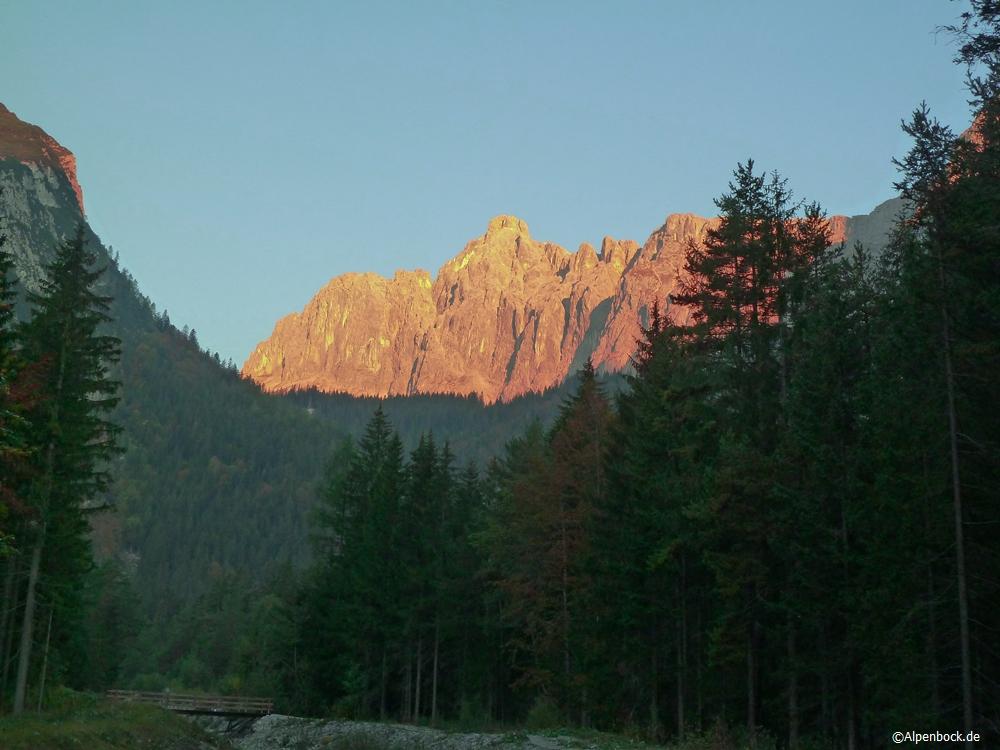 schüsselkar alpenbock