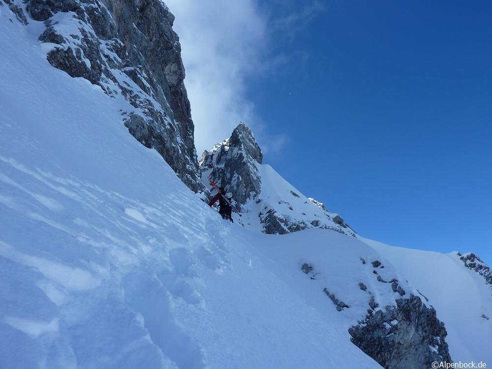 griesspitze alpenbock