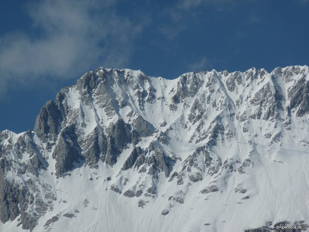 hochplattig alpenbock
