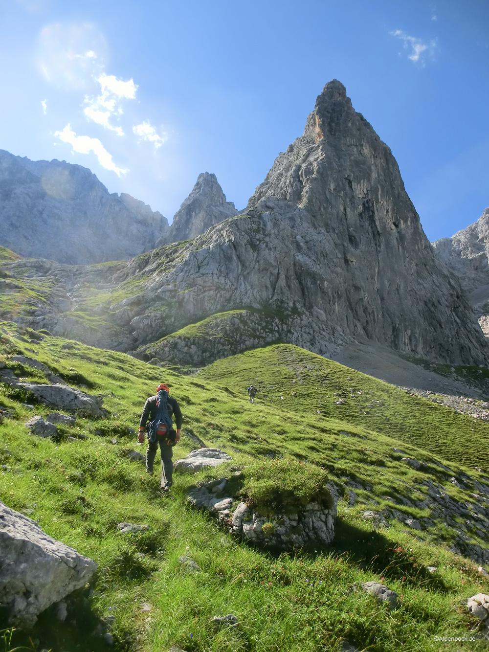 oberreintal alpenbock