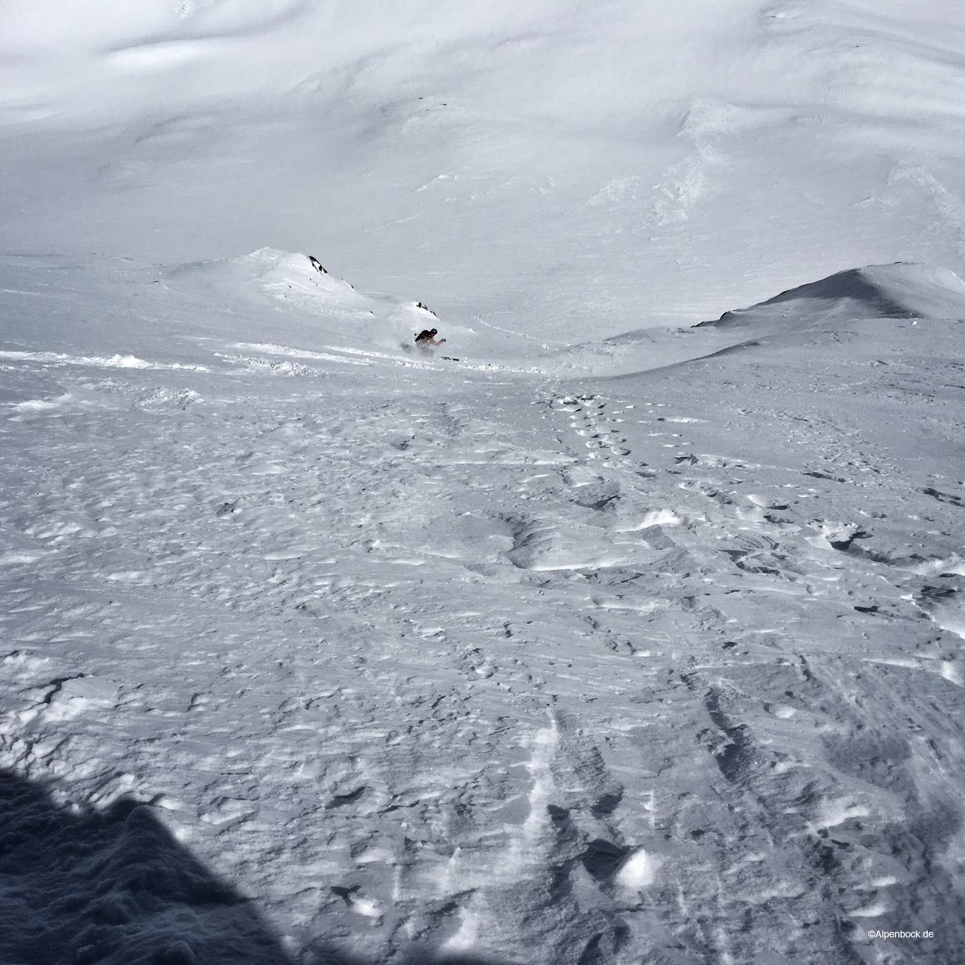 alpenbock_fuscherkarkopf